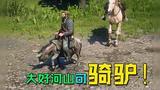 【独播】【小瓜瓜508】大好河山可骑驴!《荒野大镖客2》最强坐骑!