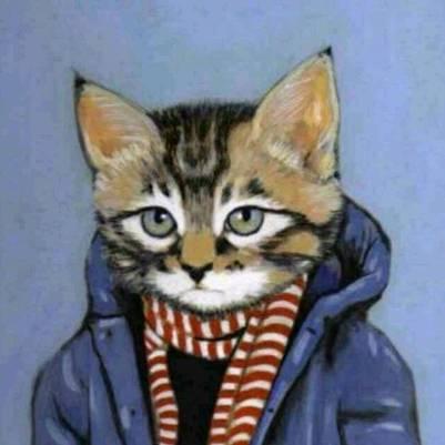 猫后生配音秀