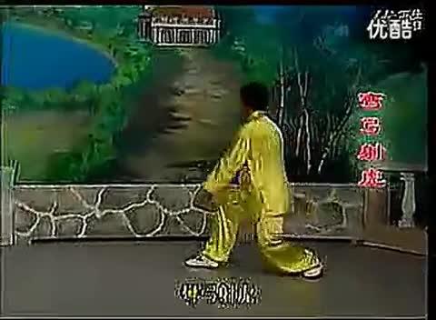 杨静太极拳48式视频_42式杨氏太极拳背向演练(口令版)-体育视频-搜狐视频