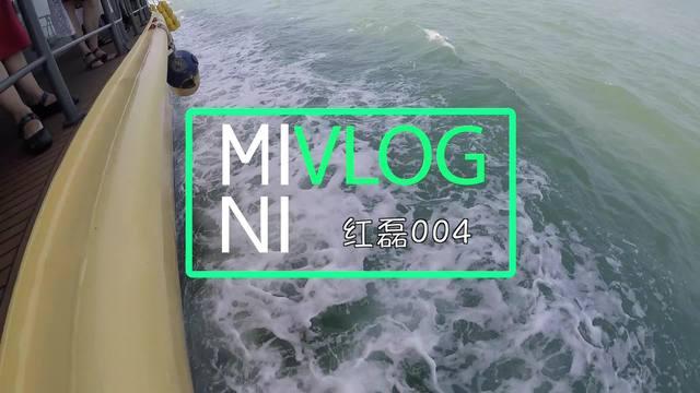 【洪磊 迷你Vlog】长岛出海游,这里的海鸥不吃鱼 004