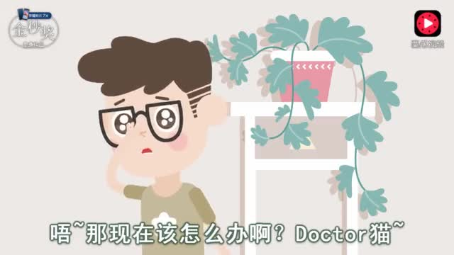 Doctor猫育儿视频 小儿积食也会造成便秘